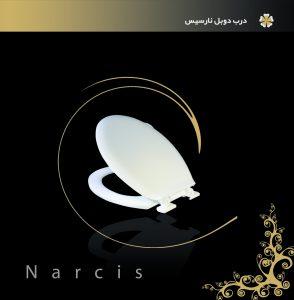 6-narcis